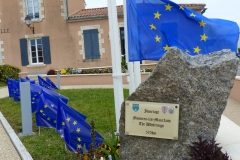marche-de-l-europe-9mai2019-004