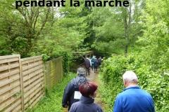 marche-de-l-europe-9mai2019-006